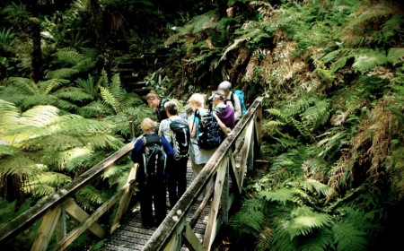 Active Adventures New Zealand Oh the Serenity Hump Ridge Track Fiordland by Alexandra Malcolm